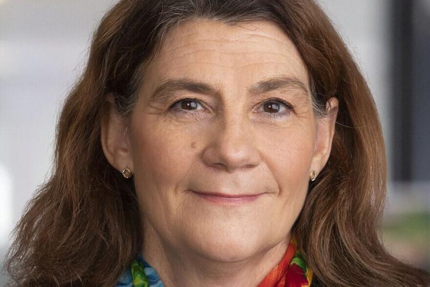 Marie Hallander Larsson - Föreläsning   Föreläsare
